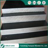 madeira compensada da construção de 12mm 15mm 18mm