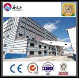 Costruzione della struttura d'acciaio per il magazzino/villa del workshop