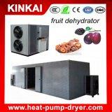Het rode Dehydratatietoestel van Data, de Drogende Machines van de Vruchten van de Citroen/van de Mango