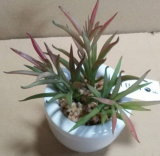 Migliore Succulent artificiale di vendita delle piante di Gu-Jys-Succulent024
