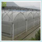 Estufa poli do túnel dos sistemas hidropónicos com cobertor térmico