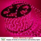 Классицистическое Traditional Christmas Holiday СИД Rope Light в Varis Colors Good Quality Cheap Price