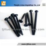 黒のリン酸で処理されるか、または良いまたは粗い糸の乾式壁ねじ
