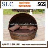 Daybed del rattan/mobilia del patio/Daybed di vimini (SC-B7020)