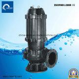 Qw 시리즈 더러운 물을%s 전기 잠수할 수 있는 하수 오물 수도 펌프