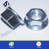 Noix galvanisée de bride (DIN6923)