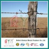 Колючей проволоки Anti-Oxidation ограды фермы /оцинкованной колючей проволоки ограждение