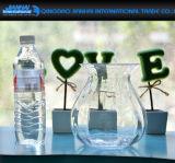 Florero de cristal del arte de los electrodomésticos claros para la decoración casera