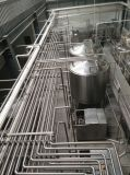 FULL Automatic 1000L/H Condensed Milk Processing Plant