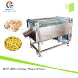 Peladora de Wshing de la patata del acero inoxidable Mstp-500, jengibre Peeler y arandela, peladora vegetal