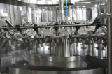 Installation de transformation de jus de fruits d'animal familier ou de bouteille en verre