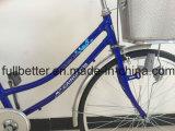 26 [بما] نساء دراجة