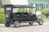 型のゴルフ車の電気手段