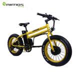 20インチのBafangの二重モーター11.6ah LG電池が付いている脂肪質のタイヤ48V 750Wの電気自転車