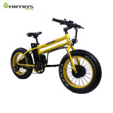 20 인치 두 배 모터 뚱뚱한 타이어 48V 전기 자전거