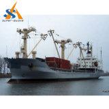 buque de carga del carguero de graneles 22000dwt