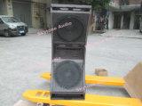 3 Sprekers van de Serie van de Lijn van het Systeem van 12 Duim van de manier de Dubbele Audio