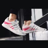 La nueva llegada al por mayor calza los zapatos ocasionales de Flynit de los zapatos del deporte de los hombres
