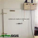 Cella frigorifera, conservazione frigorifera, mini frigorifero, surgelatore