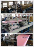 650kg/H XPS schäumte Blatt-Strangpresßling-Maschinen