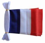 75Dポリエステル昇進の2018年のロシアのワールドカップのフランスの旗布(J-NF11P07045)