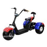 安く3つの車輪の人力車のない電気乗客の三輪車