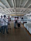 300のmmの熱い付着力の床の装飾的な木工業のLamiantingの包む機械