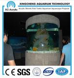 Tanque de peixes acrílico do tamanho de Customed da alta qualidade feito em China para o Sell