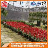 Multi Überspannung Venlo vorfabriziertes Polycarbonat-Blumen-Gewächshaus