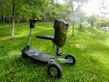 Im Freien Freizeit-intelligenter Falz-elektrisches besichtigenauto für alte Leute mit Cecertificate