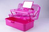 Caso cosmético de la alta calidad caliente de la venta/rectángulo de almacenaje plástico (Hsyy3103)