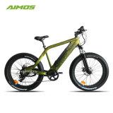 新しいパテントの脂肪質のタイヤの新しいモデル48V750Wの電気自転車の熱い販売法