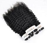 Перуанской Kinky вьющихся волос для необработанной заготовки Virgin (Категория 9A)