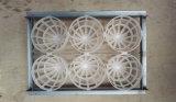 plateau à œufs industrielle numérique de l'autruche avec 6 oeufs d'Autruche