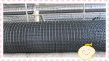 Vetroresina calda Geogrid di alta qualità di vendita
