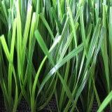 حارّ [ثيولون] مغزول عشب اصطناعيّة لأنّ [إيندوور سكّر] درجة