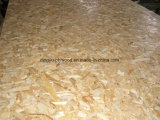 1220x2440mm placa OSB / WBP OSB Cola/ 18mm OSB