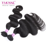 Yvonne 바디 파 급료 7A 브라질 인간적인 Virgin 머리