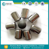 좋은 가격 중국 PDC 단추를 교련하는 기름과 광산을%s 공장에 의하여 하는 PDC 드릴용 날