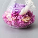 La venta caliente preservó el regalo de la flor para la decoración del cumpleaños