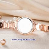 Vigilanze di cuoio di Wist del quarzo delle signore su ordinazione, vigilanza della lega della donna (WY-17050)