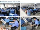 Ära-Ventile Belüftung-Komprimierung-Kupplung Pn10 (F1970), NSF-Pw u. Upc