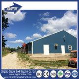 低価格の鉄骨構造の建物デザイン養鶏場の層のための取除かれた挿入のニワトリ小屋