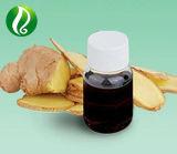 100% puro y natural Aceite Esencial de Jengibre para la alimentación
