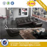 1+1+3 Patas de metal moderno de la Oficina de cuero sofá (HX-8N2168)