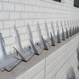 Transitoire galvanisée de mur de treillis métallique de rasoir de barbelé