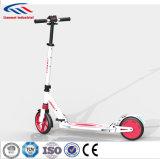 Simple et bon marché Scooter électrique Fabricant aidant les patins d'administration de la batterie
