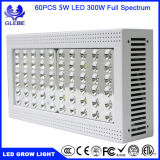 Hydroponic Induction 5W Chips High Power LED Grow Lights 300W pour cultures commerciales Grow Light LED Grow