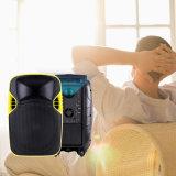 12 Zoll aktive DJ-Lautsprecher-mit LED-Projektor und Bildschirm