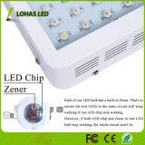 LED de alta potência de luz crescer Full Spectrum para efeito de estufa hidrop ico